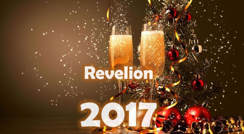 Revelion 2017 la vila Caraiman